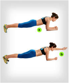 plank 2