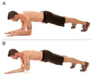 plank 4