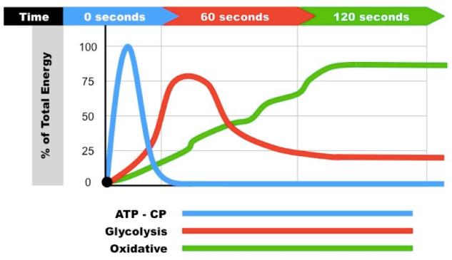 energy graph
