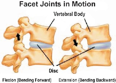flexion-and-extension-joint