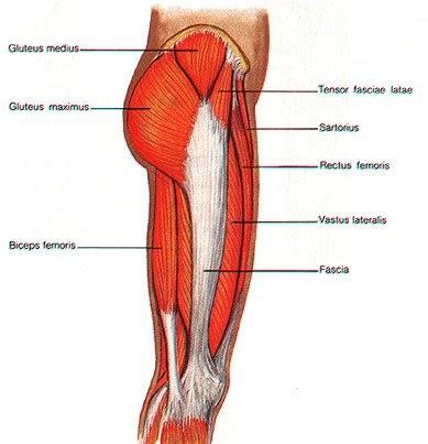 side hip.jpg